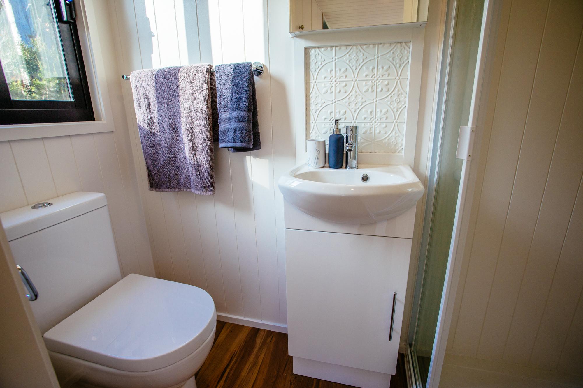 GS6000DLP Toilet